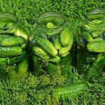 Czas na probiotyki