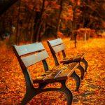 Dlaczego łatwiej odchudzić się jesienią (i zimą)?