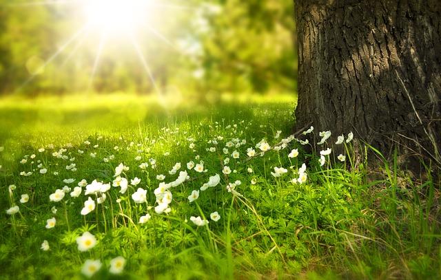 wiosna motywuje do odchudzania