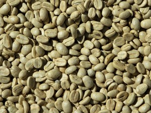 Zielona kawa na odchudzanie