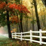 Jesienią też możesz się odchudzić