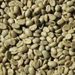 Poznaj właściwości zielonej kawy