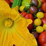 Letnie warzywa – dlaczego warto je jeść?