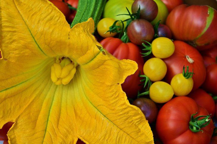 Letnie warzywa na odchudzanie
