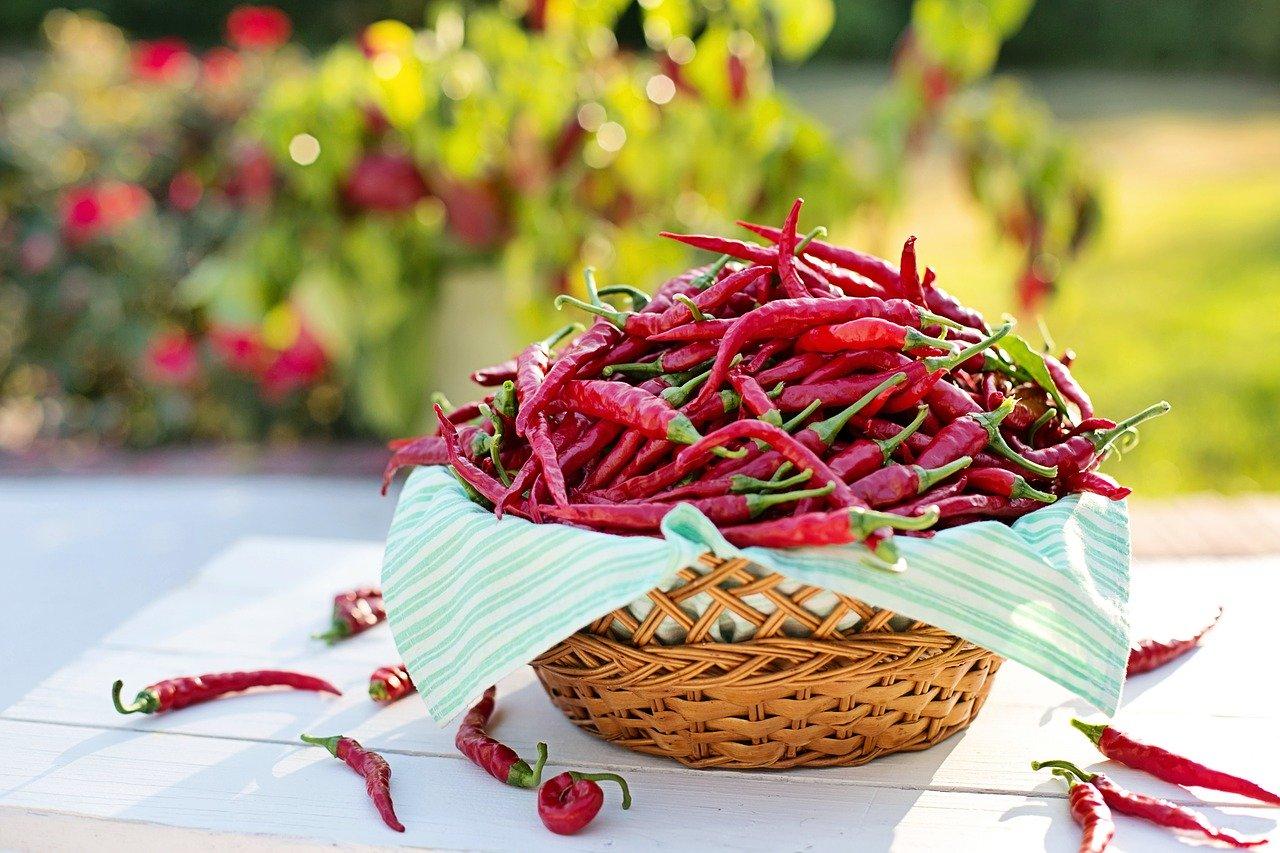 Naturalne spalacze tkanki tłuszczowej - Chili